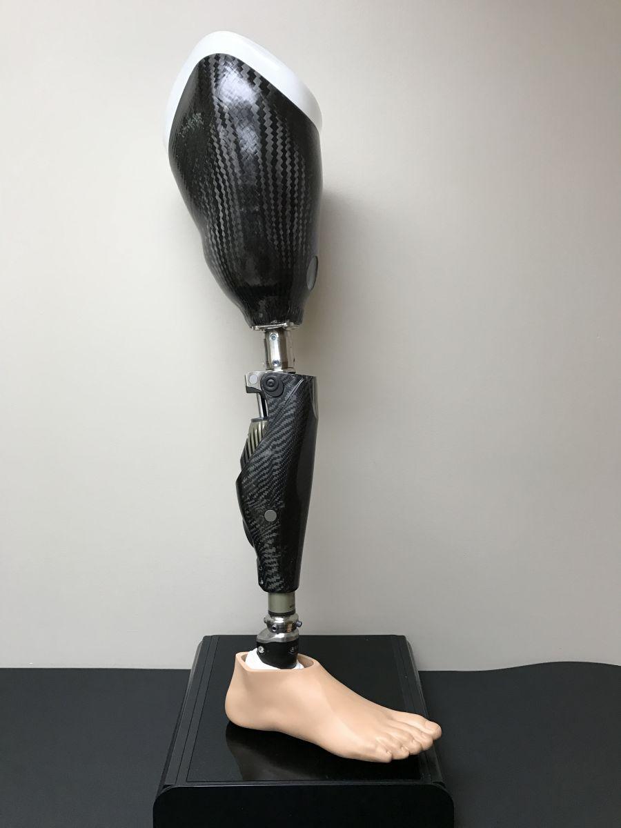Our Services - Yanke Bionics   Ohio